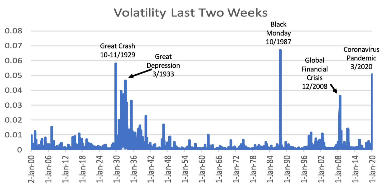 Pandemiconomics: Viral Volatility